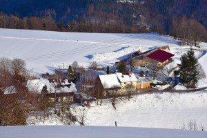 Helblingsmatt in Pfaffenberg
