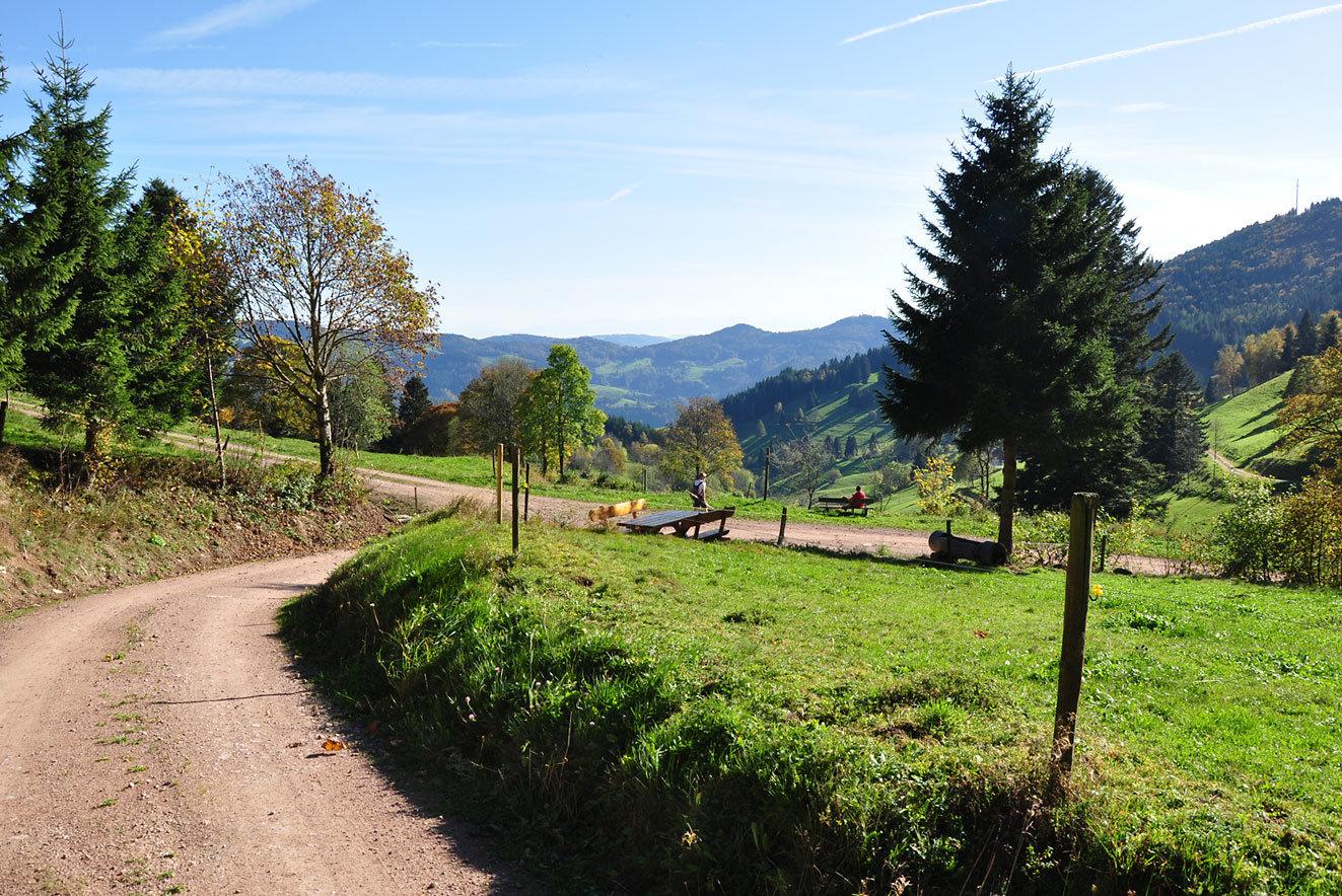 Wandern Rund um Pfaffenberg